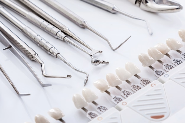 歯科用ツールと歯のサンプル
