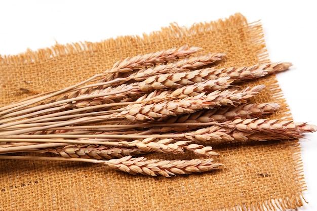 Вретище и пшеница