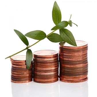 Монеты евроцента и зеленый росток