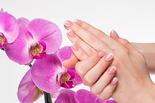 フレンチマニキュアと蘭の花
