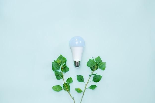 自然を保護するための環境への意識と節電を象徴する柔らかい緑の葉が付いている支柱の間の電球を導いた
