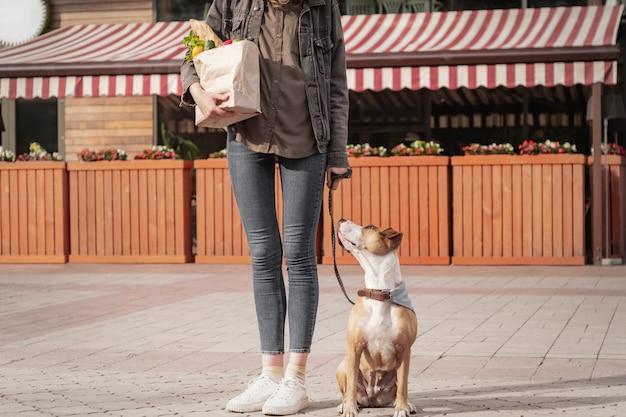 訓練を受けた犬と一緒に食べ物を買いに行く。ピットブルテリアの子犬と若いきれいな女性は、市場の場所や野菜店の前に食料品の紙袋を保持しています。