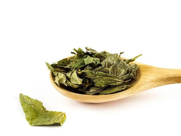 Сушеные листья лекарственного галега в деревянной ложке на белом