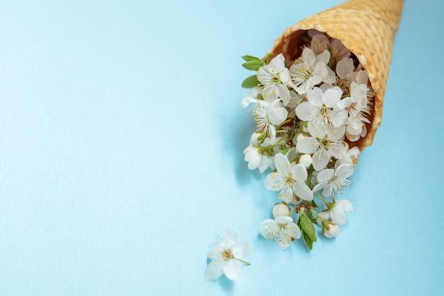 春のコンセプトです。花の背景。青色の背景に白い花を持つアイスクリームコーン。テキストのためのスペース