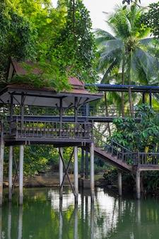 ジャングルに囲まれた池に架かる美しい木製の橋。背の高いヤシの木が水に映っています。