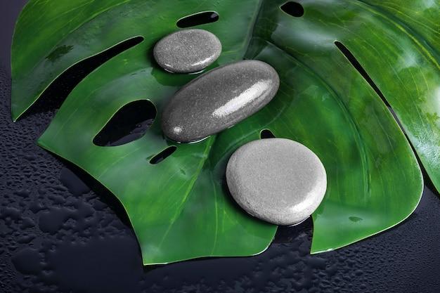湿った緑の葉の上に灰色の石があります。美容院および美容院の設計。