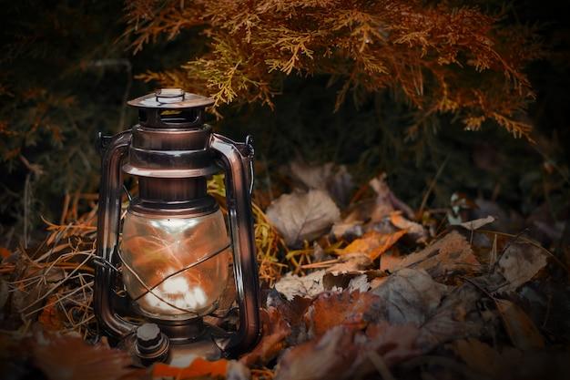Винтажная керосиновая лампа освещает осенние листья и ветви ели.