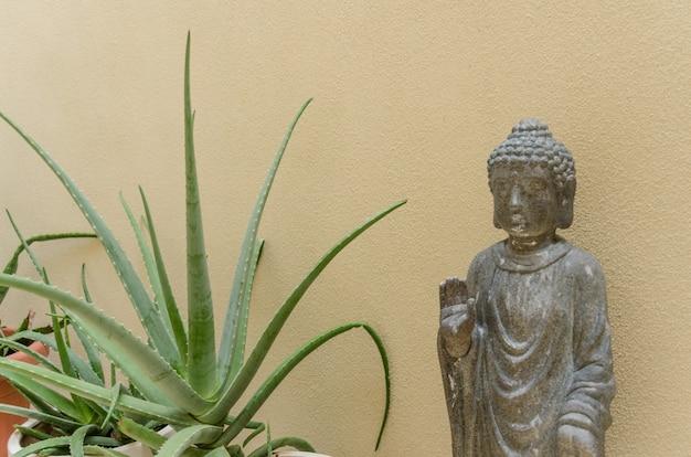 Будда и некоторые зеленые растения