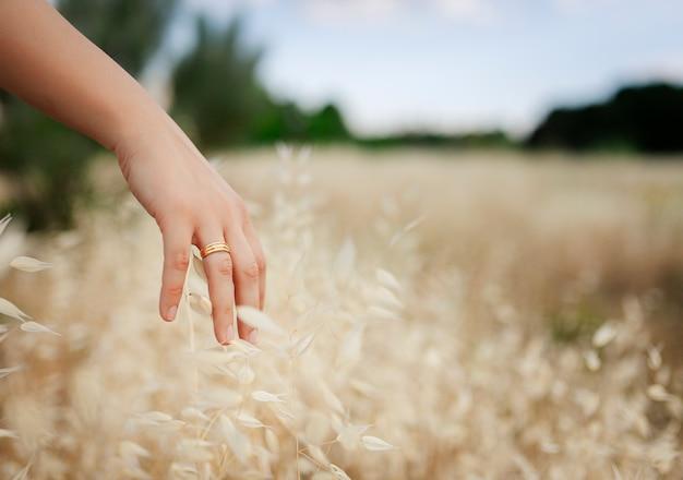 Рука девушки с женатым кольцом ласкает сухие листья.