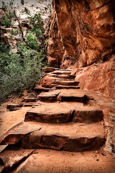 アメリカの砂岩の崖に沿って山道
