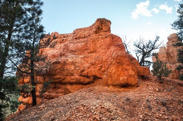 Крупным планом худу рок пейзаж возле красный каньон в штате юта