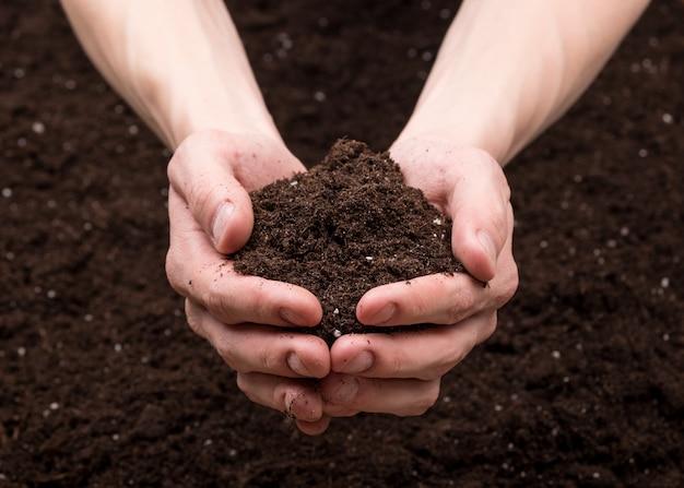 手の中の土