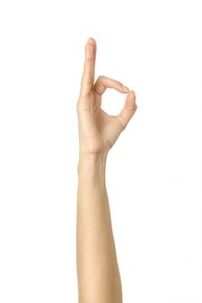 Хорошо знаком. жест рукой женщины изолированный на белизне