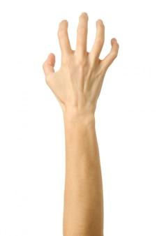 引っ張ったり、つかんだり、手を伸ばしたり、引っ掻いたりすること。白で隔離される女性の手ジェスチャー