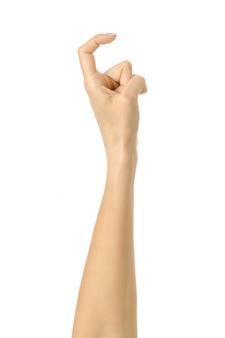 Палец тянется или царапается. жест рукой женщины изолированный на белизне
