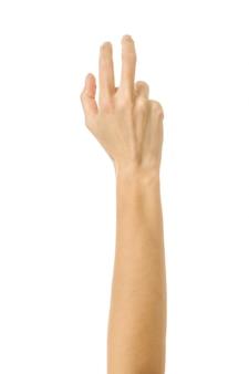 指が届いたり引っかいたりする。白で隔離される女性の手ジェスチャー