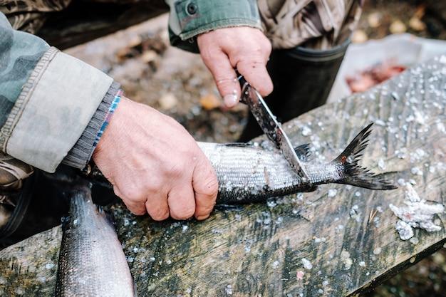 屋外の木製ボード上の魚のクリーニングの漁師