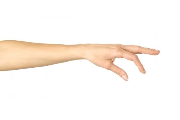 Ручной сбор, удержание, захват или достижение. жест рукой женщины изолированный на белизне