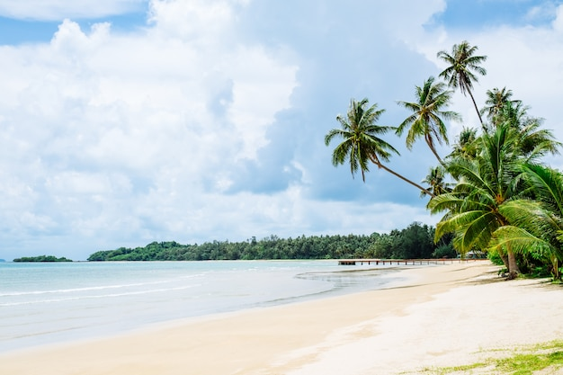 Тропический пляж с пальмами