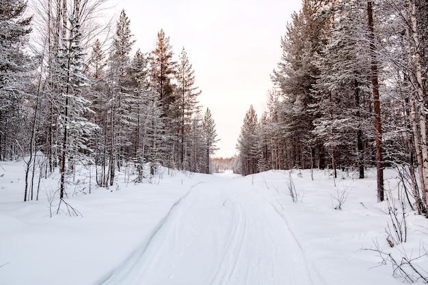 美しい冬の風景