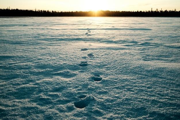 非常に寒い朝に雪の上の男の足跡