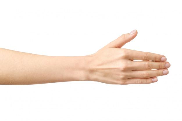 ハンドシェイクの準備ができている女性の手