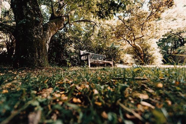 公園のベンチの下のショットから
