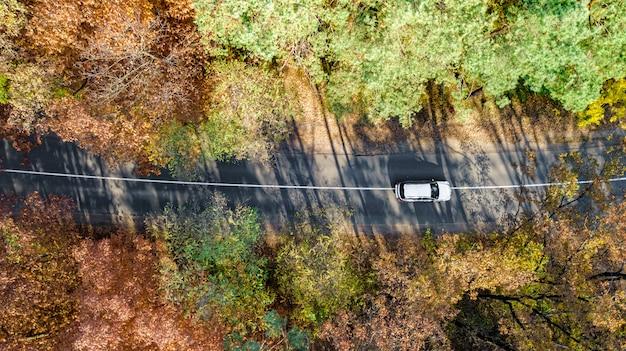 秋の風景と上から、黄色、緑、赤の黄金の秋の木々と車の田舎道からの道の空撮
