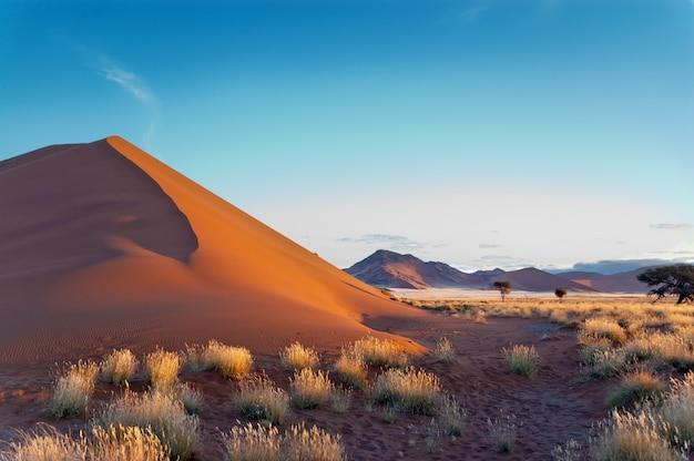 Красивые дюны и природа пустыни намиб, соссусвлей, намибия, южная африка
