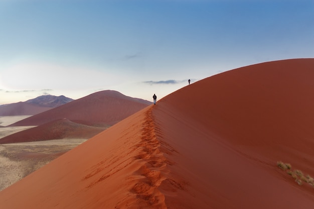ナミブ砂漠の美しい砂丘の上を歩いて、旅行や南アフリカでのハイキングの人々