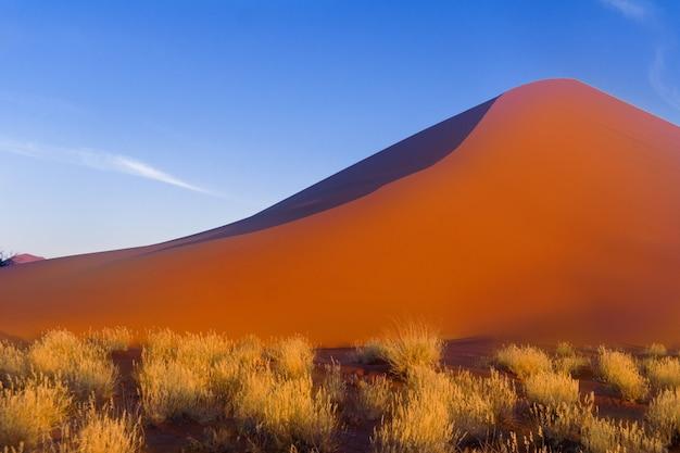 アフリカの風景、美しい夕日の砂丘、ナミブ砂漠、ソススフレイ、ナミビア、南アフリカの自然