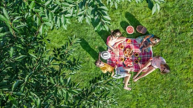 公園でピクニックを持つ子供、庭の草の上に座って屋外で健康的な食事を食べる子供、上から空中ドローンビュー、家族での休暇、週末の概念を持つ子供を持つ親と幸せな家族