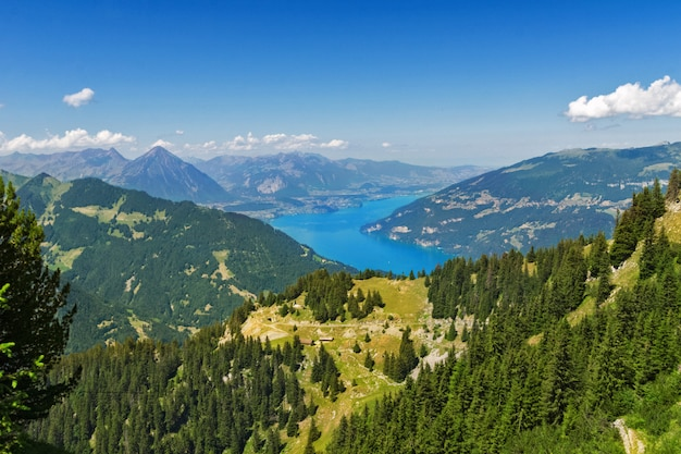 湖と夏、スイスの山の美しい牧歌的なアルプスの風景