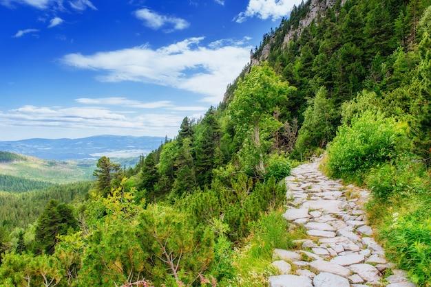 Зелёный луг и голубое небо с облаками над горами украина