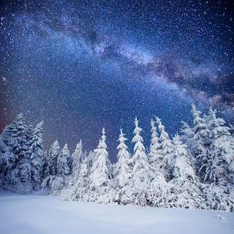 Молочный звездный путь в зимнем лесу