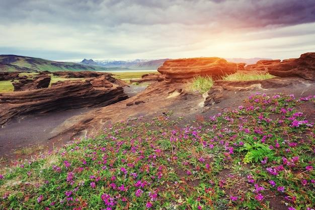 アイスランドの火山岩。日没。