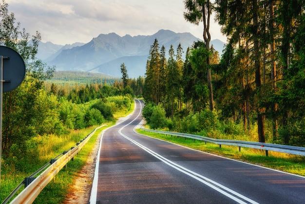 Дорога ведет через лес в горы