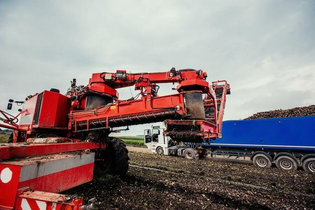 トラックと掘削機の収穫。