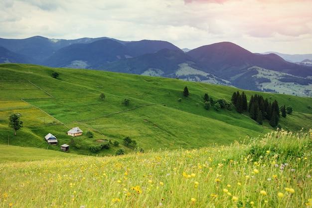 Красивый уютный солнечный летний день и горы. карпаты