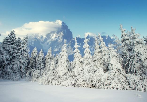 Таинственный зимний пейзаж величественных гор