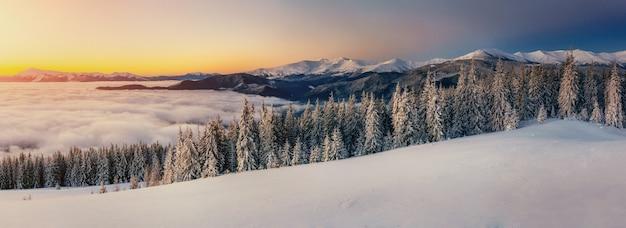 冬の山の霧。幻想的な夕日。カルパティア山脈。ウクライナ。