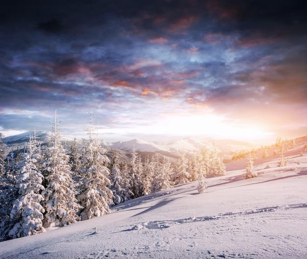 Фантастический зимний пейзаж, шаги, что-то ведущее в