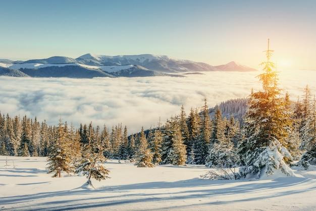 冬の山の霧。幻想的な夕日