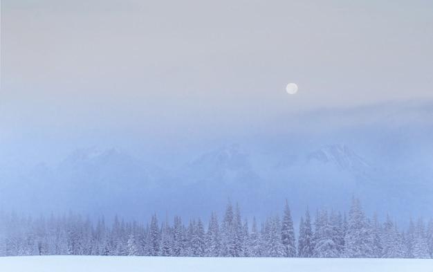 Таинственный зимний пейзаж величественных гор зимой.