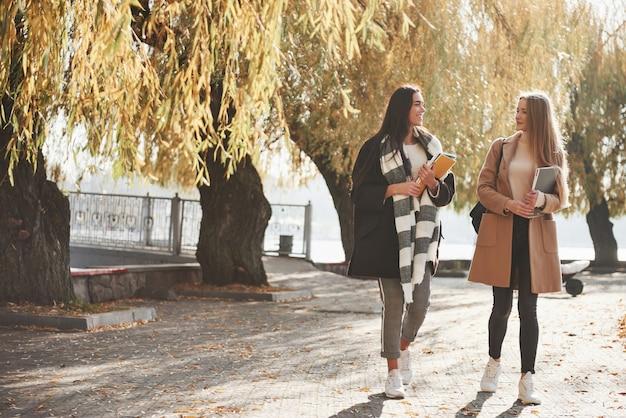 女友達が美しい秋の公園を散歩する
