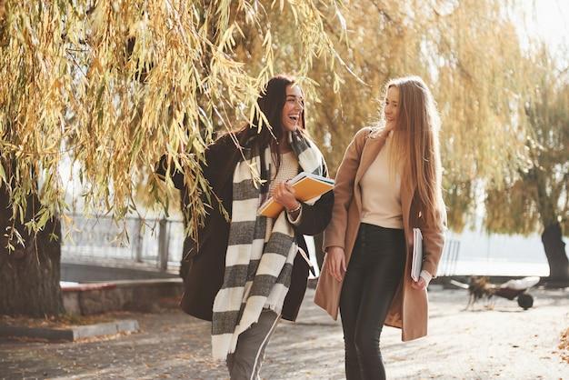 リラックスした雰囲気。女友達が美しい秋の公園を散歩する