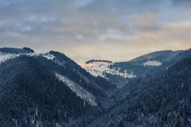 山の冬の風景