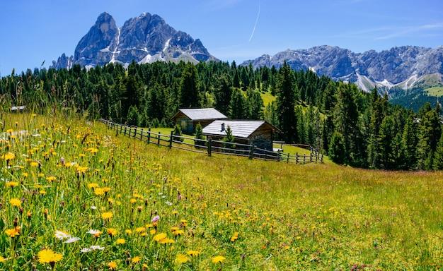 夏の晴れた日の魅力的な家