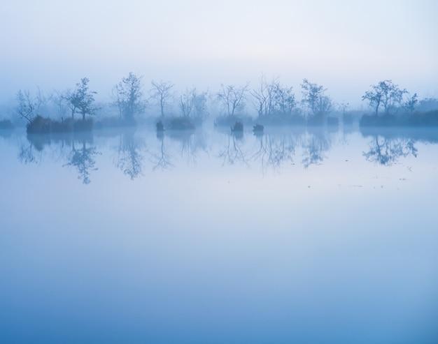 Туман в воде