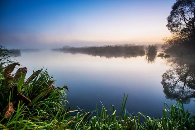 神秘的な沼地